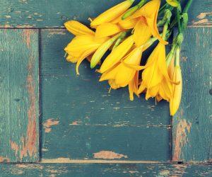 Blumen-drei